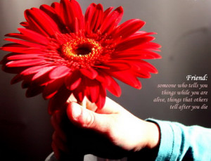 Cool Friendship Quotes On Flowers Wallpapers 2014 Collection. Blossom ...