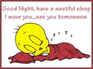 Good Night quotes cute quote night tweety bird goodnight good night ...