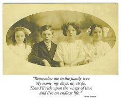 More Genealogy Humor: Funny Quotes & Sayings for Genealogists