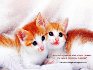 beautiful friendship quotes by great minds must see for all click here ...