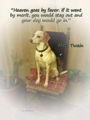 Dog Heaven Quotes