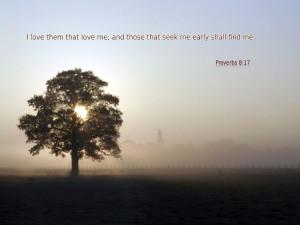 Proverbs 8:17 Papel de Parede Imagem
