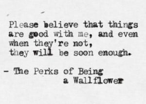 Stephen Chbosky , The Perks of Being a Wallflower