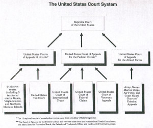 Federal Court System Structure Chart