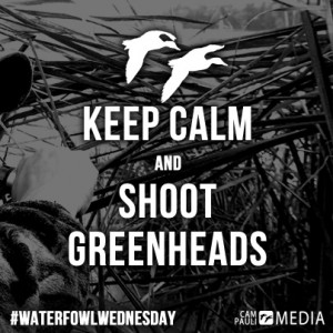 DuckHunting #Hunting #Waterfowl #Greenhead ... | Quotes and Inspirat ...