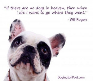 If There Are No Dogs In Heaven Then When I Die I Want To Go Where They ...