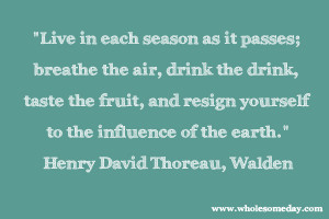 Quote from Henry David Thoreau