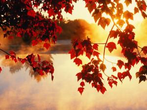 Nice Autumn Wallpaper desktop hd 1280x960 hd wallpaper for desktop ...