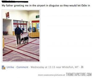 Funny photos funny blind man dog