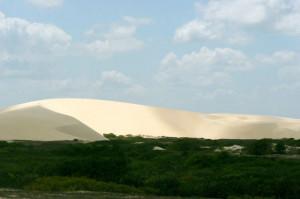Beautiful Oasis in the Desert (22 pics)