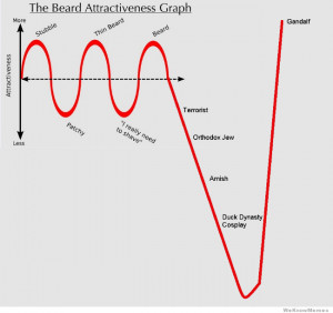 Beard Attractiveness Graph – from stubble to gandalf