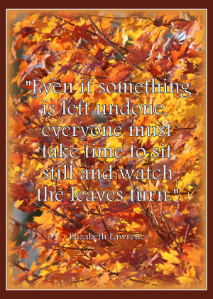 Autumnleaves Japan Quotes