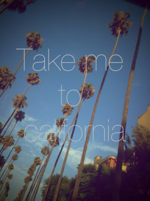 beach, california, hipster, indie, pale, palm trees, quote, sky ...