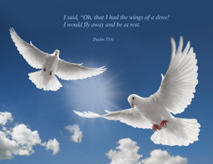 ... Had The Wings Of A Dove I Would Fly Away And Be At Rest - Bible Quote