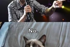 titanic grumpy cat quotes