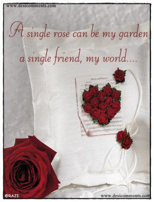 Single Red Rose Quotes Single red rose quotes single