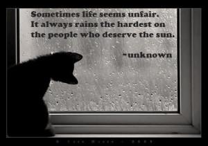 Sunshine & rain