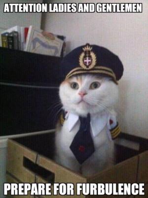 Aye aye meawoo Captain!