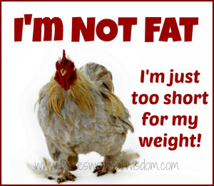 not fat - I'm just too short for my weight.