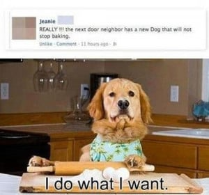 baking funny pictures