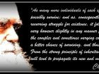 Animals, whom we have made our slaves, we do not like to consider our ...