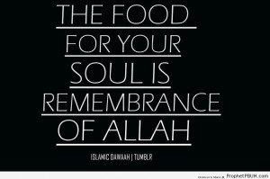 How to Feed the Soul - Islamic Quotes About Dhikr (Remembrance of ...