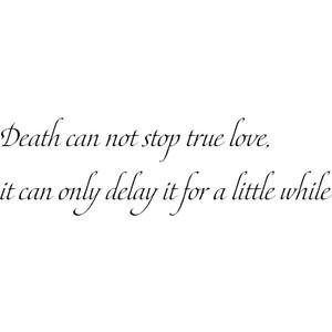 the princess bride love quote