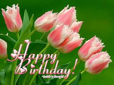 birthday more pink flower parrot tulips pretty pink parrots tulip ...