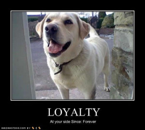 funny-dog-pictures-loyalty-forever.jpg