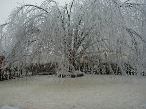 Source Url Ice Storm Flickr