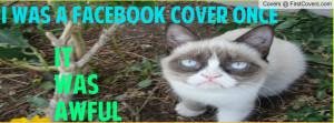 grumpy_cat-1352939.jpg?i