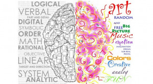 Brain Development – interactions of left and right hemispheres of a ...