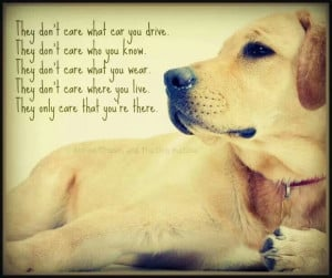 Love my dog... #quotes #doglovers