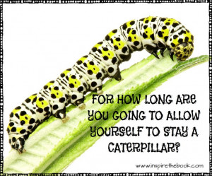 For how long are you going to allow yourself to stay a caterpillar? # ...