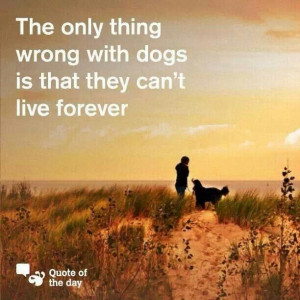 The only thing wrong with dogs is that they can't live forever. ..