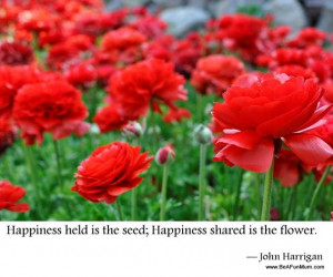 happiness held is the seed happiness shared is the flower john ...