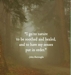 John Burroughs Quote - Nature More