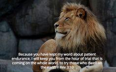 God rewards endurance. . . . More