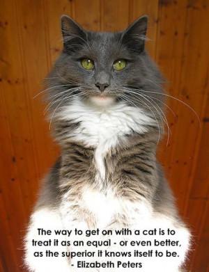 Famous Cat Quotes