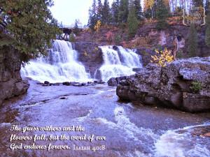 isaiah-40-8-verse-for-autumn-or-fall.jpg