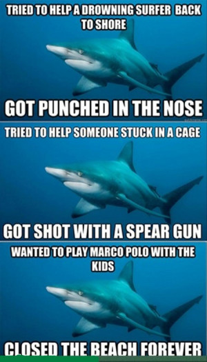 FUNNY SHARK QUOTES
