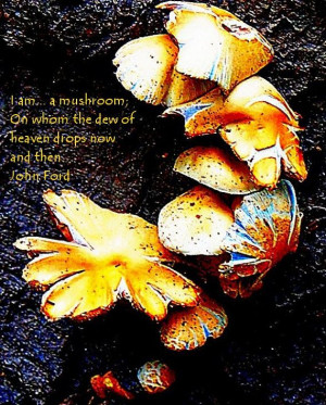 John Ford Quote I am...a mushroom On which the dew by TheGlasArc, $50 ...