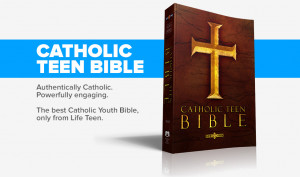 Catholic Teen Bible