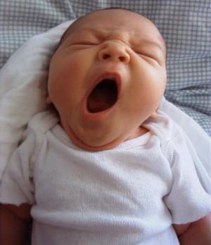 yawn.jpg#yawn