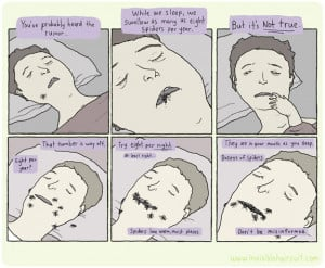 Eight spiders in mouth per night while sleeping