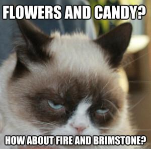 Funny Cats | Top 49 Most Funniest Grumpy Cat Quotes