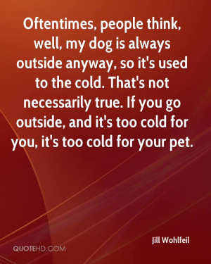 It 39 s so Cold Outside Quotes