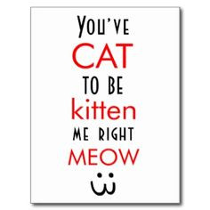 For that certain family member who is sworn to be a future cat lady.