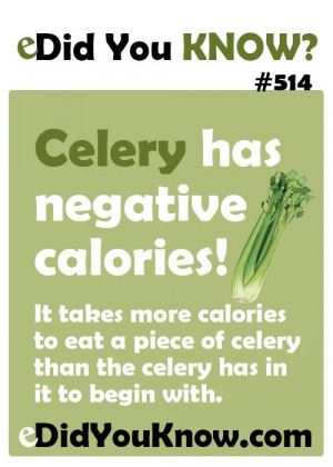 ... of celery than the celery has in it to begin with. eDidYouKnow.com