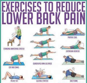 Exercises To Reduce Lower Back Pain, Daily Health Tips, Healthy ...
